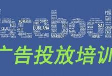 Shopyy联合Facebook官方帮助SHOPYY商户解决广告投放痛点