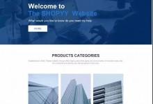 关于B2B企业官网询盘展示网站,SHOPYY平台支持哪些主要功能