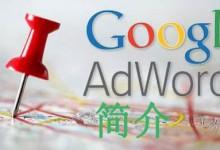 Google 和 Google AdWords 简介